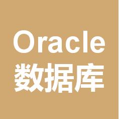 Oracle数据库和数据库开发
